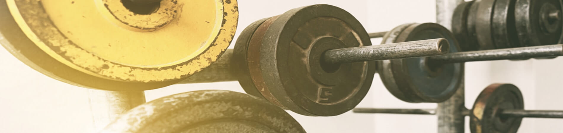Old School Muscle Building: Workout Regimen - Old School Labs