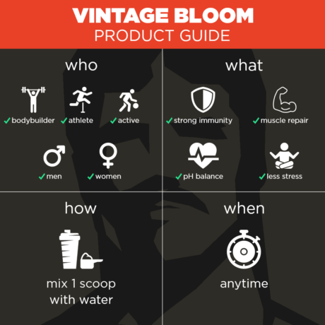 Vintage Bloom Product Guide