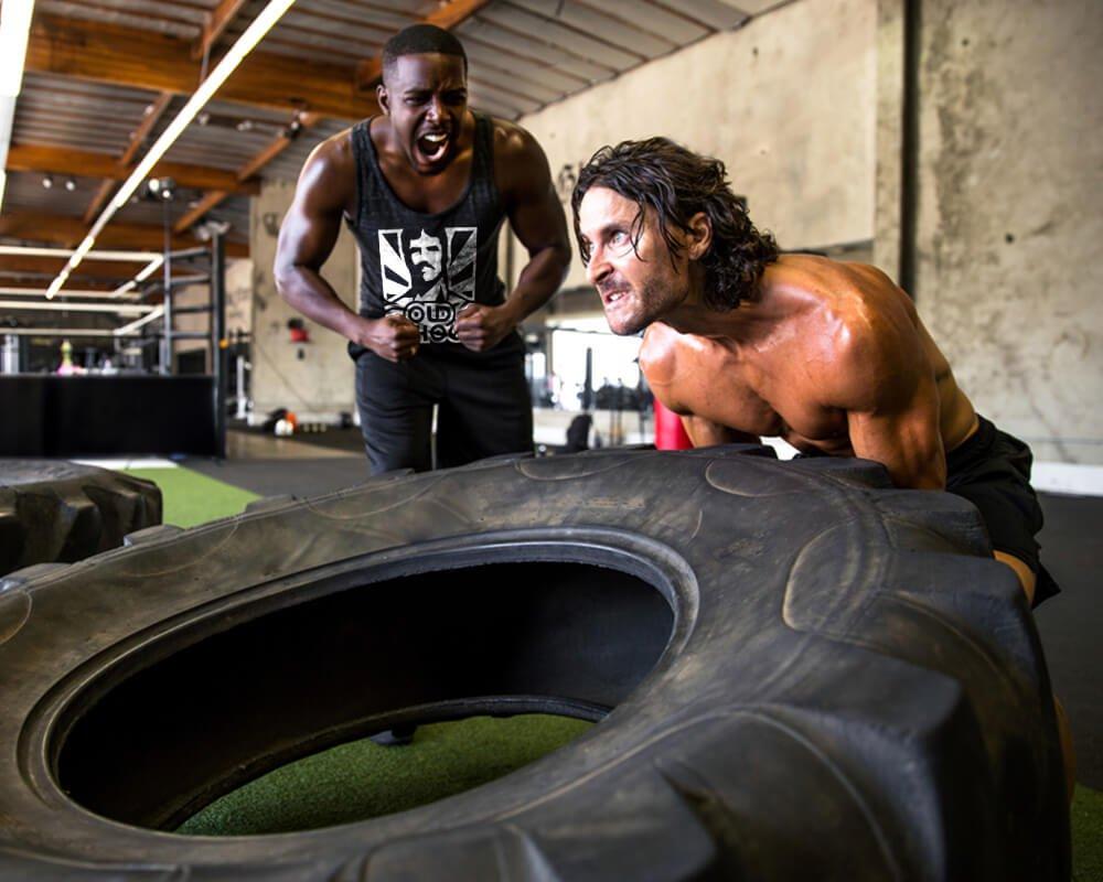 Training Partner