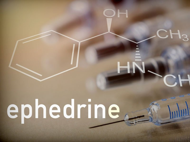 Ephedra vs  Ephedrine: Which Is Best for Fat Loss? - Old