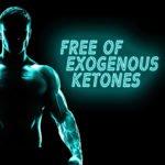 Free of Exogenous Ketones