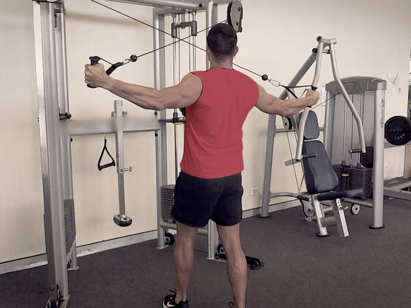 cable rear delt fly crossover