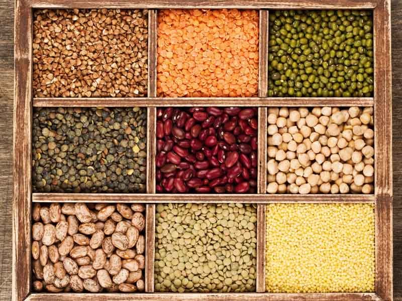 Types of rice, beans, and protein
