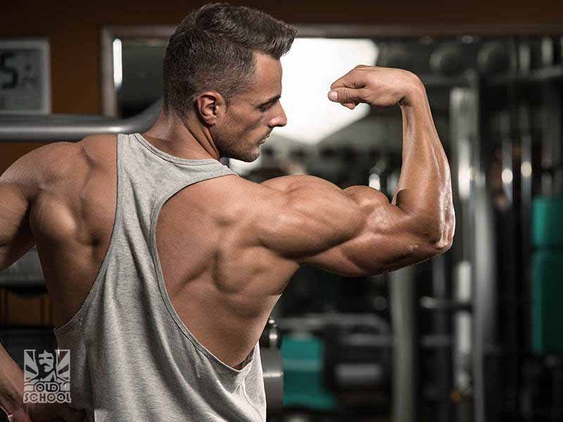Bodybuilder Flexing Bicep