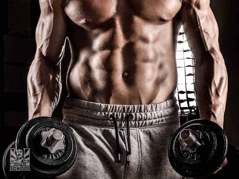 Warrior Diet and Strength Training