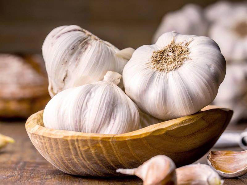 Garlic Boost Testosterone