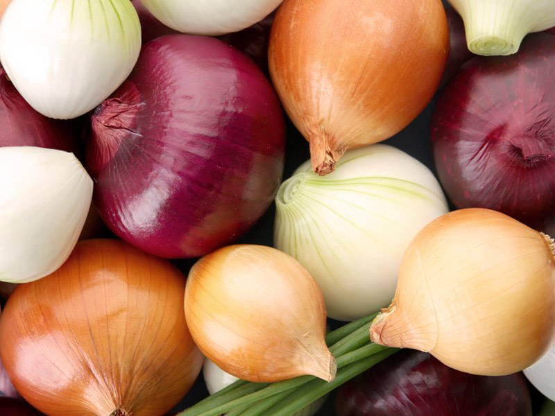 Onion Boost Testosterone